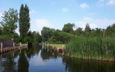 Groene AS Aalsmeer fase 1 – project 7