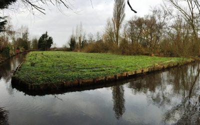 Groene AS Aalsmeer fase 1 – project 8